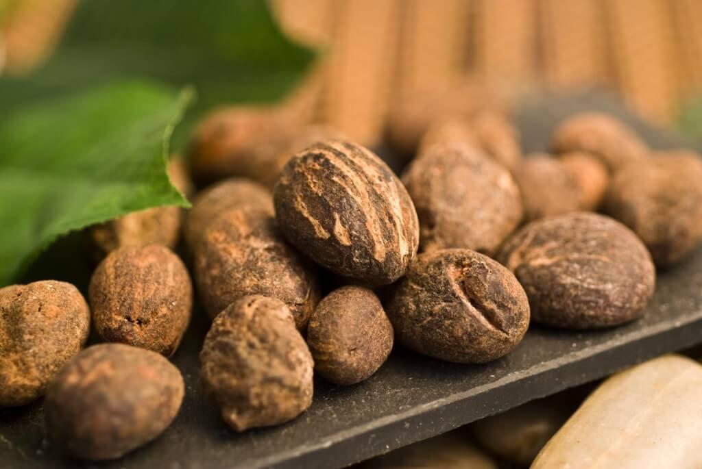 raw shea nuts on dark surface
