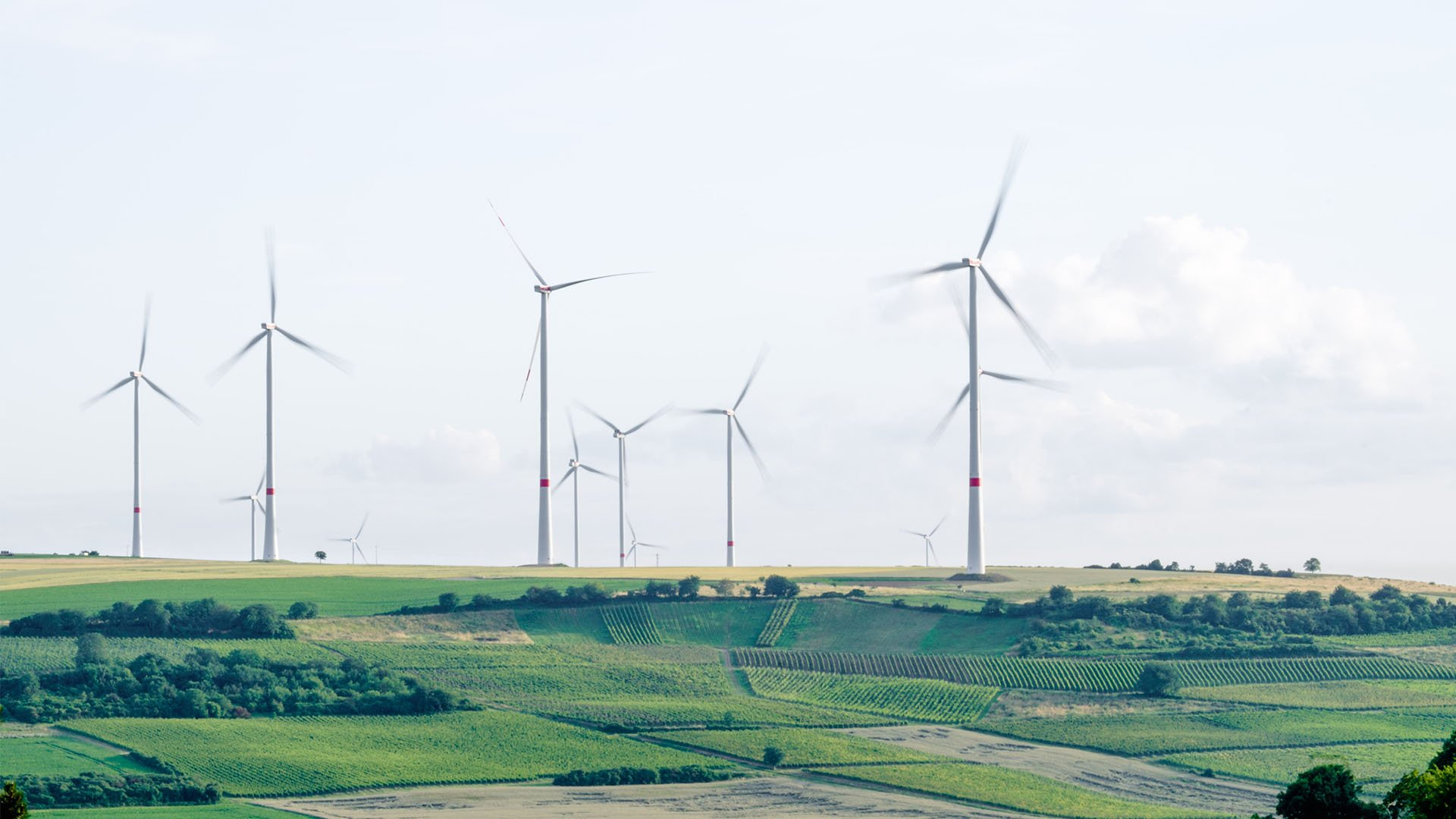 Renewable energy in Denmark: wind power
