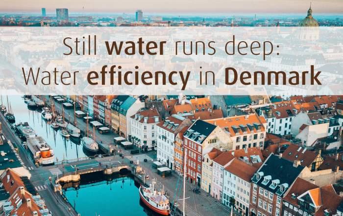 water efficiencyin denmark