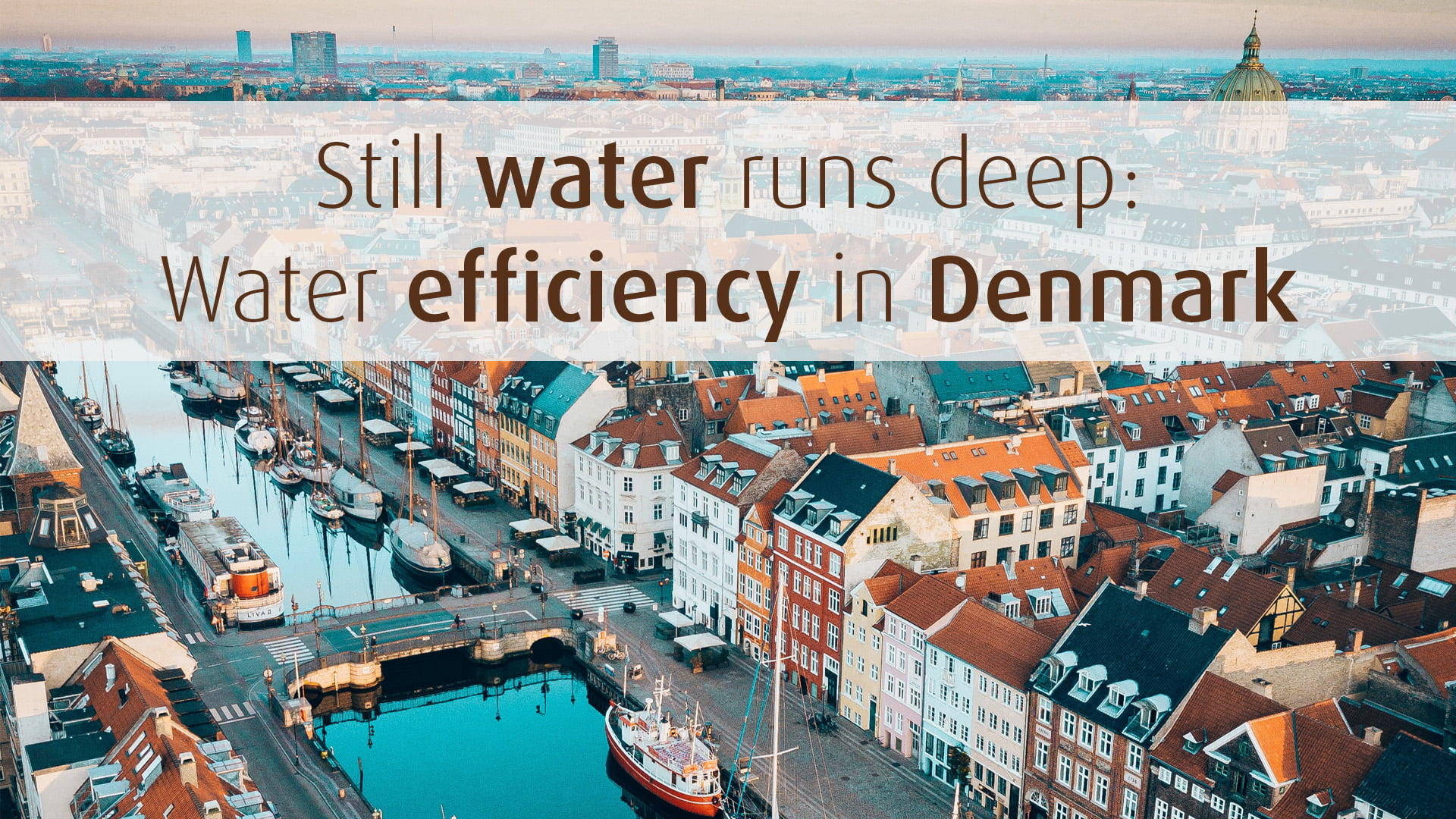 water efficiencyin denmark